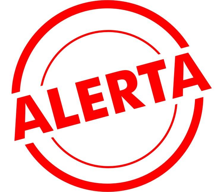 Configura Google Alerts para saber cuando alguien habla deti